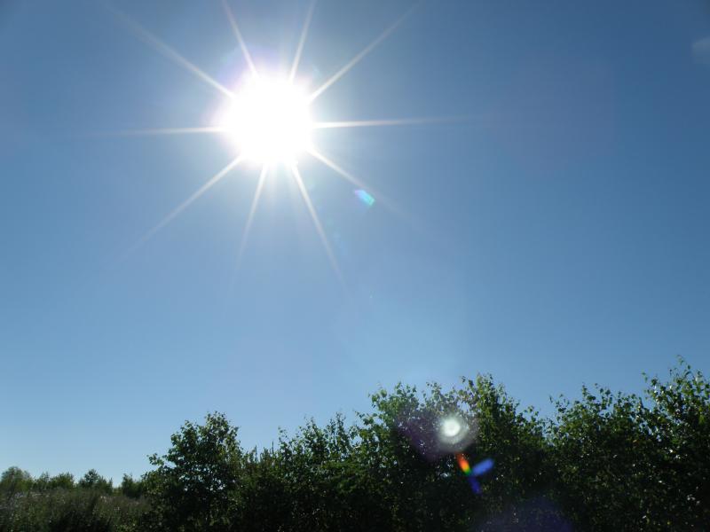 Лето, солнце